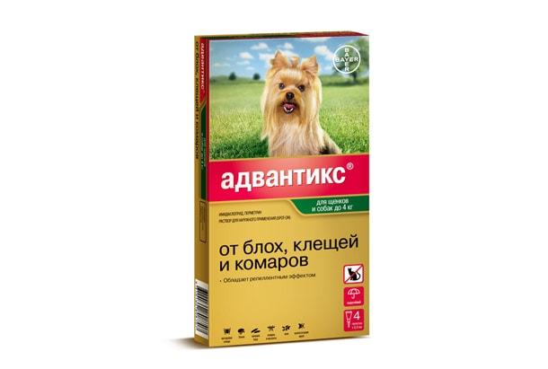 для любимых собак