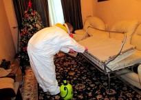 Способы избавиться от клопов в диване