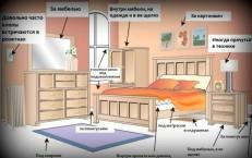 Где живут постельные клопы