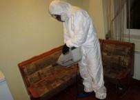 Санобработка от клопов в квартире