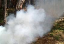 Дымовая шашка против насекомых